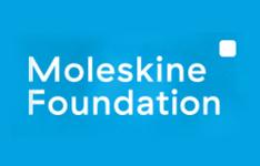 Moleskin Foundation